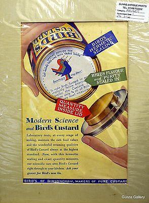 Original Vintage Advertisement mounted ready to frame Birds Custard c1950's