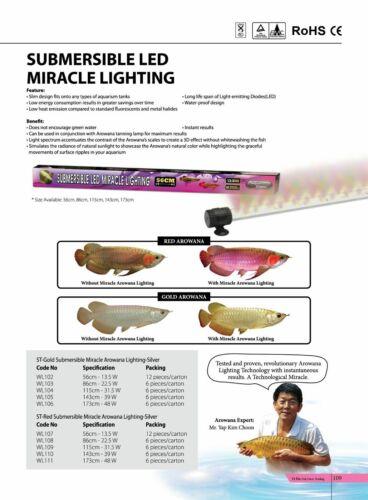 AQUAZONIC ST GOLD AROWANA (SUBMERSIBLE) MIRACLE LIGHT (86 CM) 22.5 W