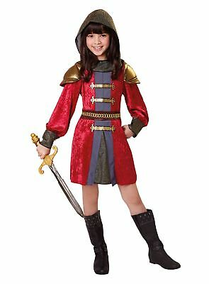 Knight Princess, Large, Assasins Creed, Girls (or Boys!) Fancy Dress