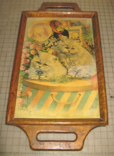 """PERSIAN CATS 15"""" x 22"""" Wooden Tray Display in VG Condition - Could Hang on Wall"""
