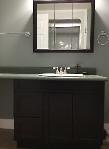Sink and faucet with counter top cabinet