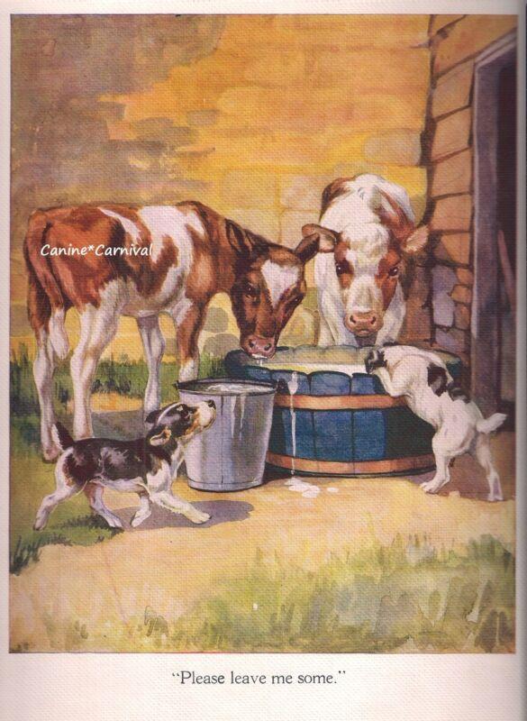 VINTAGE FARM FOX TERRIER DOGS ADORABLE W/ BABY CALFS COWS Art Print 1936 DOG