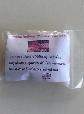 1X60 400 MG Cúrcuma Comosa Cápsulas Menstrual Alivio Vaginal Apriete Reparar