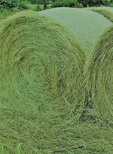 Freshly cut Quality Rye/Clover/Lucerne round bales -Chi Chiltern Indigo Area Preview