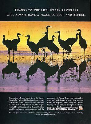 Birds on Cactus Playa Lake--1999 Phillips Petroleum Advertisement