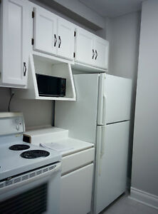 Renovated 1 Bed Steps From Downtown! + 1 Month Free