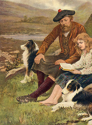 Scottish Border Collie - BORDER COLLIE DOGS SCOTTISH SHEPHERD AND DAUGHTER LOVELY DOG GREETINGS NOTE CARD