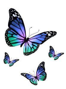 Set 4x sticker decal vinyl car bike laptop macbook bumber butterfly blue purple