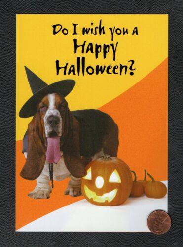 HALLOWEEN Basset Hound Dog Dog Witch Costume  - Greeting Card New W/ TRACKING