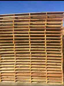 Good quality pallets for sale Brendale Pine Rivers Area Preview