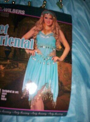 1001 Nacht Kleid Kostüm Damen Bollywood Orient Prinzessin - Bollywood Prinzessin Kostüme