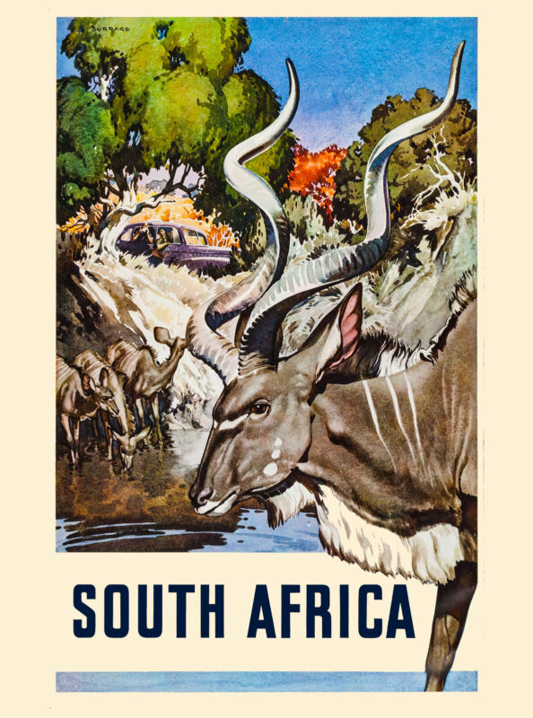 South Africa Vintage African Impala Antelope Travel Advertisement Art Poster