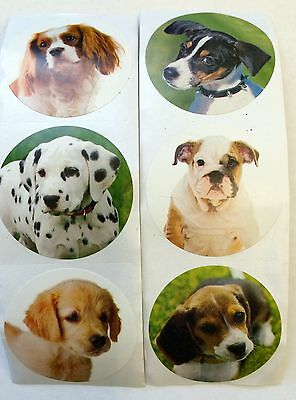 100 Dog Puppy Stickers Party Favors Teacher Supply #2 Dalmatian beagle bulldog - Puppy Party Supplies