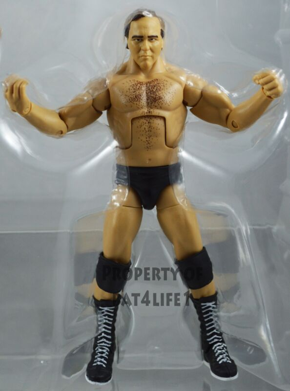 WWE Elite Larry Zbyszko WCW Hall of Fame Exclusive Mattel Figure Loose