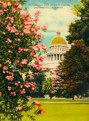 Picturesque State Capitol Sacramento California United States Travel Art Poster
