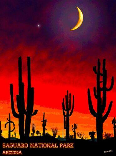 Saguaro National Park Southern Arizona U.S. Travel Advertisement  Poster Print
