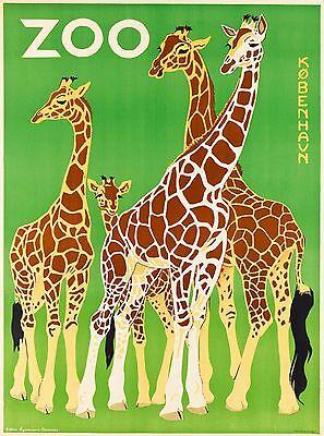 Copenhagen Zoo Giraffe Denmark Scandinavia Vintage Travel Art Poster Print