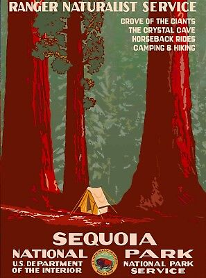 1938 Sequoia National Park Vintage California Travel Advertisement Poster Print