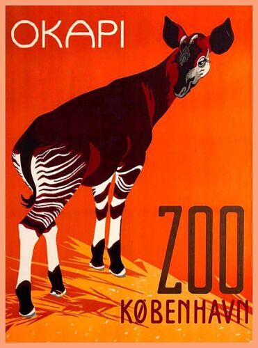 Okapi Zoo Copenhagen Denmark Scandinavia Vintage Travel Advertisement Poster
