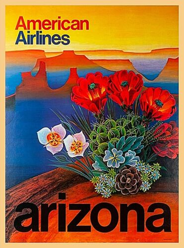 American Airlines Arizona United States Vintage Travel Advertisement Art Poster
