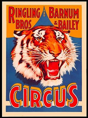 Ringling Brothers Barnum & Bailey Tiger Vintage Circus Travel Art Poster Print Barnum Bailey Circus Posters