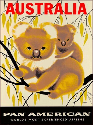 Australia Pan American Koala Bear Vintage Airline Airlines Travel Art Poster
