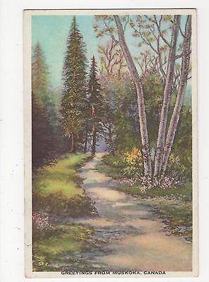Canada, Greetings from Muskoka Postcard, A812
