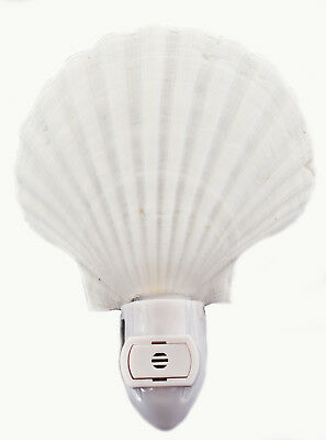 Real Seashell Night Light White Scallop Shell Beach Decor Nautical - Automatic. - Seashell Night Light