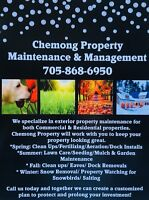 Spring clean ups and summer lawn care