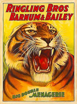 1916 Barnum & Bailey Tiger Vintage Circus Advertisement Art Poster