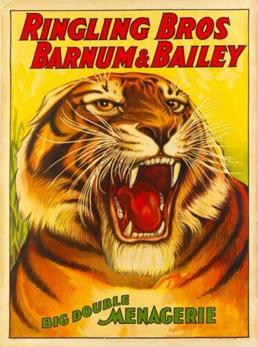 1916 Barnum & Bailey Tiger Vintage Circus Advertisement Art Poster Print