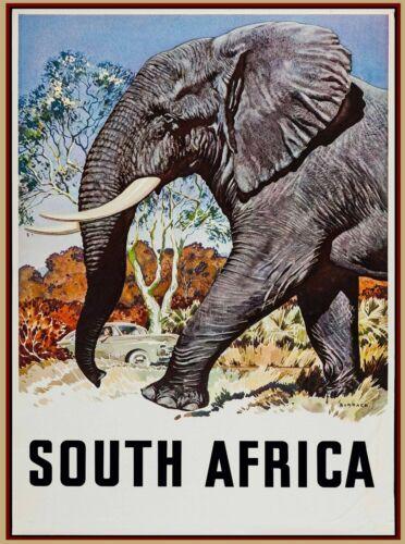 South Africa Vintage African Elephant Travel Advertisement Art Print