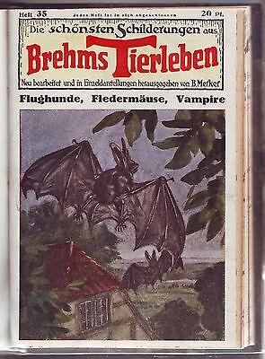 Die schönsten Schilderungen aus Brehms Tierleben um 1930 16 Hefte Volksverlag