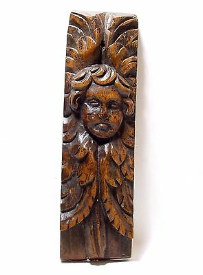 Antique French Carved Gothic Cherub | Cherubin | Oak Carving | Carved Oak Panel.