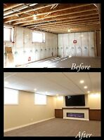 Professional Renovations & Finishing