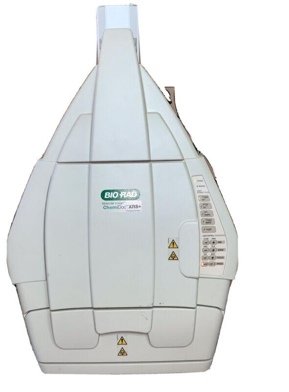 Bio-Rad Chemidoc XRS+ Imaging System.