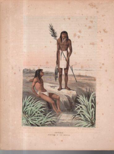 1855 Sarony Lithograph - Papago sub-tribe Arenenos - Arizona (Arthur Schott)