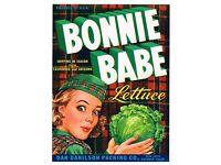 ORIGINAL CRATE LABEL VINTAGE 7X9 SALINAS BONNIE BABE PINUP 1940 SCOTTISH TARTAN