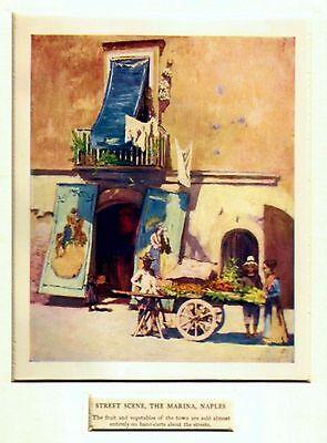 Napoli: Carretto di Frutta e Verdura alla Marina.Stampa Antica.Passepartout.1904