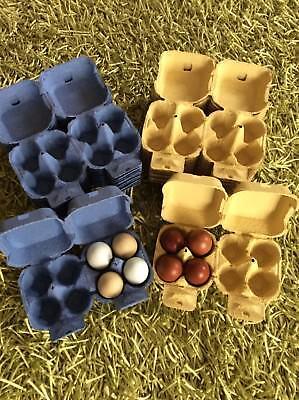 20 4-egg YELLOW Rainbow Cardboard Egg Boxes, Eggs/Crafting/Bath Bombs