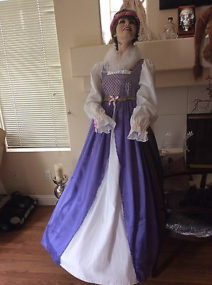 nisaince$399 costume CCuniversal studios,Cinderella,,SZ S/M (1700 Kostüm)