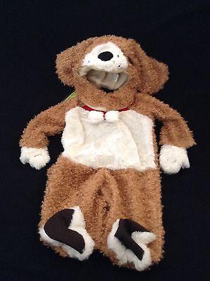NWT PLUSH PUPPY DOG  HALLOWEEN COSTUME / EYE WANT CANDY CRACKER BARREL SIZE 3-6](Eye Want Candy Halloween)