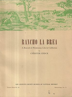 Rancho La Brea Record of Pleistocene Life in California Chester Stock (Rancho La Brea)