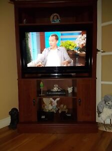 Sturdy Cabinet with Flat Screen Television  (Selling as a unit)