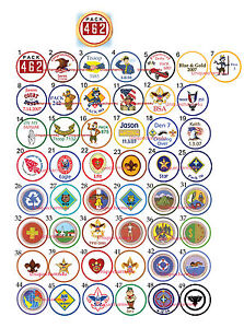 Boy Scouts edible Eagle scout cookie toppers cupcake tops decorations cub scout