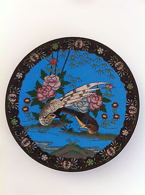 "Fine Antique Japanese Cloisonne Plate ,11.25"" , lovely Birds & Flowers"