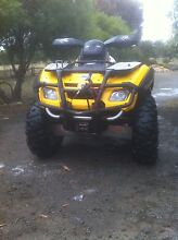 Canam 650 South Arm Clarence Area Preview