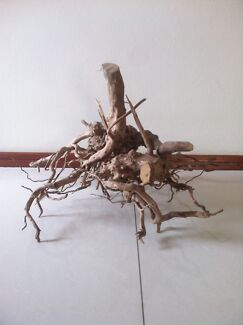 Goldenvine driftwood X3 lot1 price today only Lidcombe Auburn Area Preview