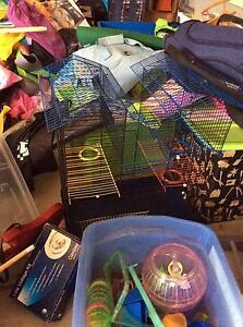 Rat cage, mice cage, tunnels, wheels and rat toys Waikerie Loxton Waikerie Preview