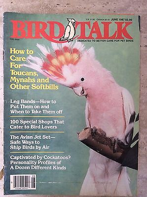 Bird Talk Magazine June 1987 Dedicated to Better Care for Pet Birds